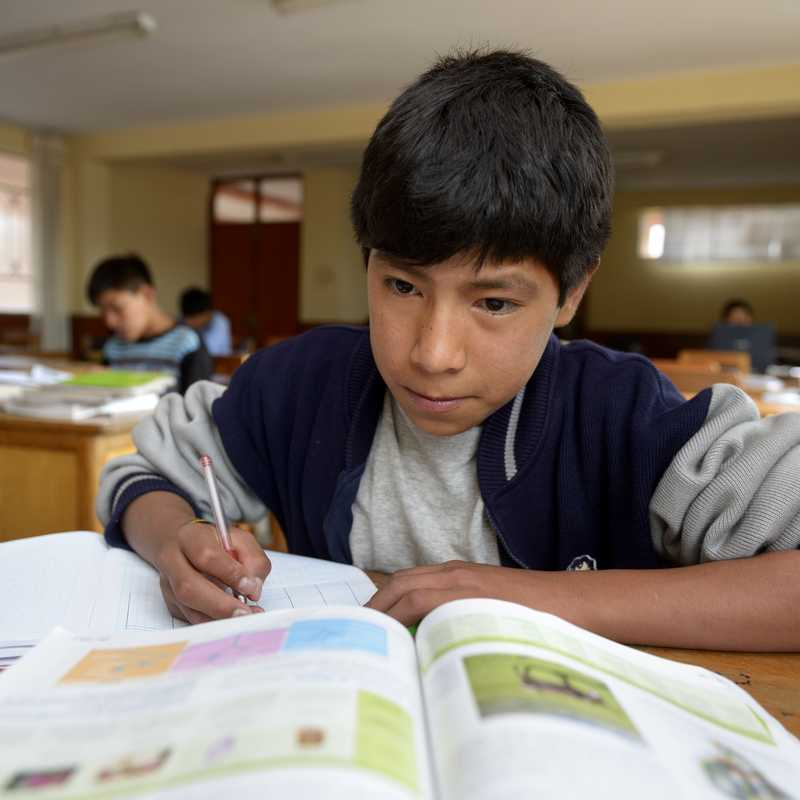 Junge, der im Unterricht sitzt und in ein Aufgabenbuch schreibt