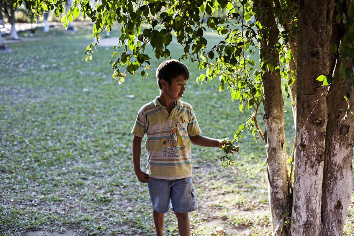 Álvaro steht an einem Baum im Garten.