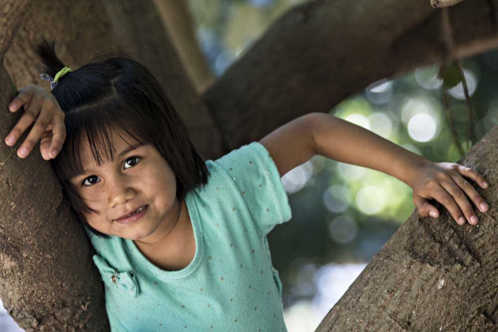 Kleines Mädchen sitzt in einem Baum
